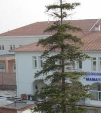 mamatseio-kozanis